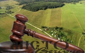 У лютому на Волині відбудеться 15 земельних аукціонів
