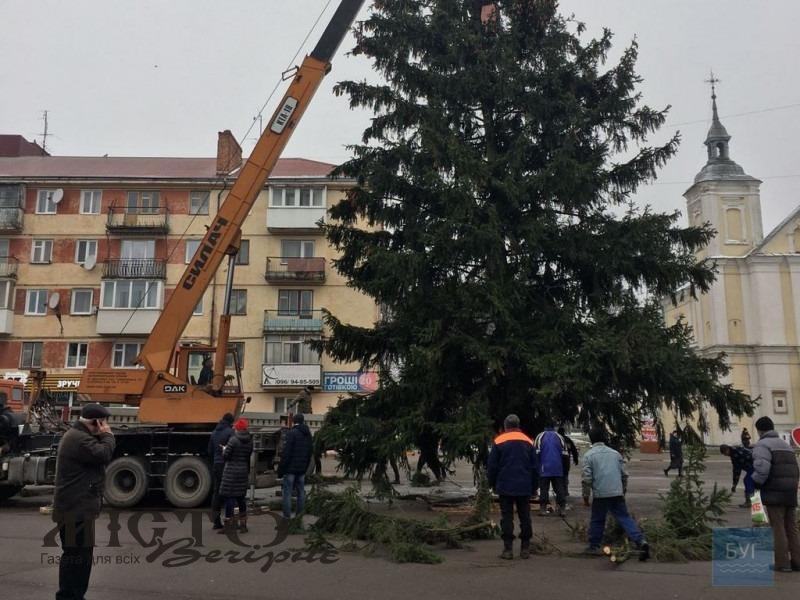 Головну ялинку Володимира привезили з Оваднівської громади