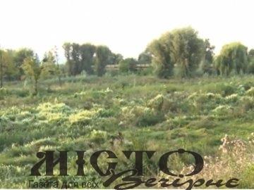 В Оваднівській громаді через недобросовісного фермера, 26 гектарів землі заросли чагарниками