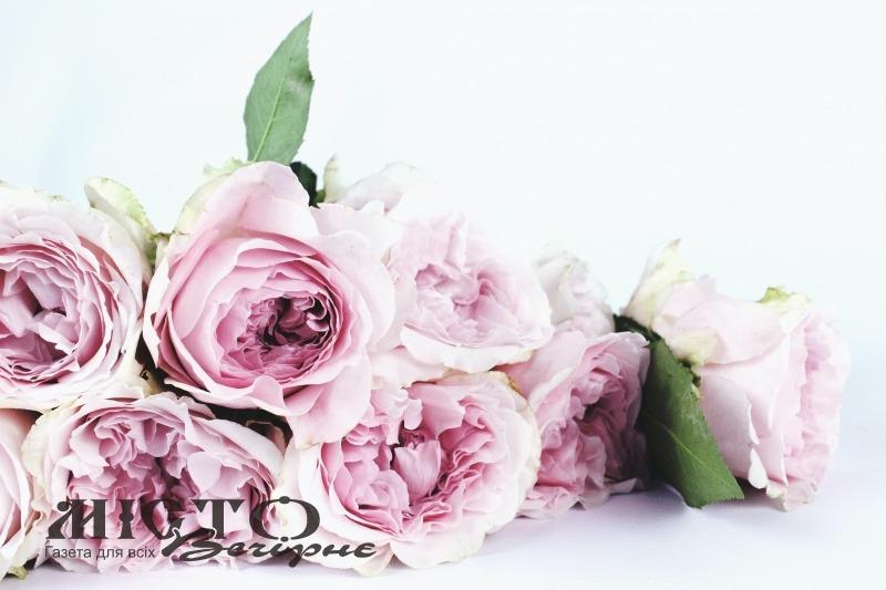 Міська рада за два місяці придбала живі квіти на понад 5,5 тисяч гривень