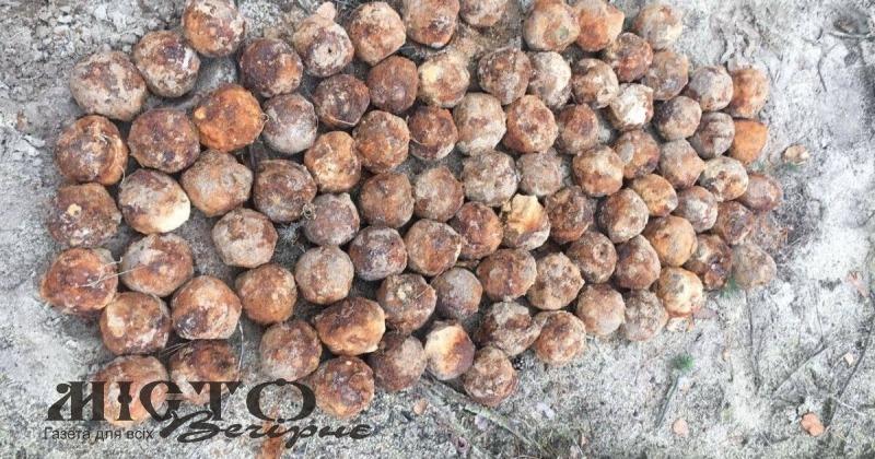 У Маневицькому лісі знайшли 110 ручних гранат часів Першої світової війни