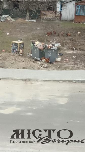 Устилузька громада потопає у смітті, яке не вивозять уже кілька тижнів