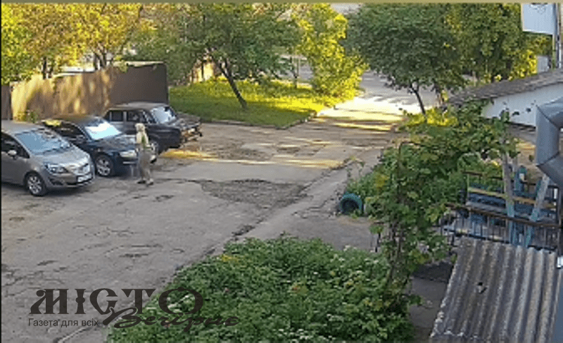 У Володимирі мешканка багатоповерхівки бореться з непроханими гостями в оригінальний спосіб
