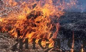 У Володимир-Волинському районі екоінспектори оштрафували 13 осіб