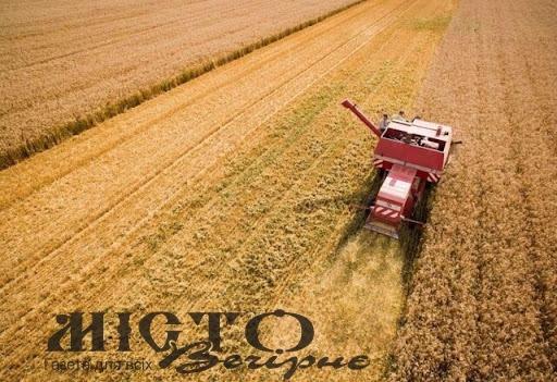 Волинь – серед лідерів за врожайністю зернових