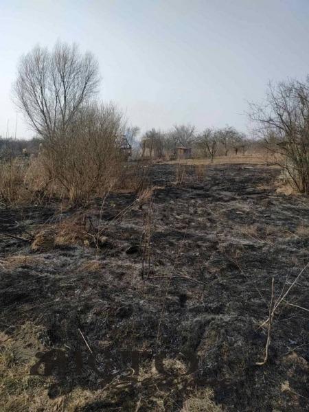 У Володимир-Волинському районі паліїв трави оштрафували на понад 3 тисячі гривень
