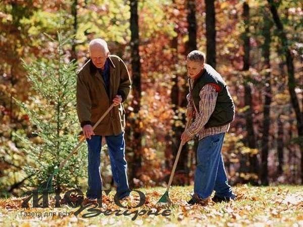 Сім корисних ідей, що робити з опалим листям