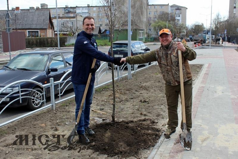 У Володимирі в рамках загальноміської толоки висадили більше 50-ти дерев