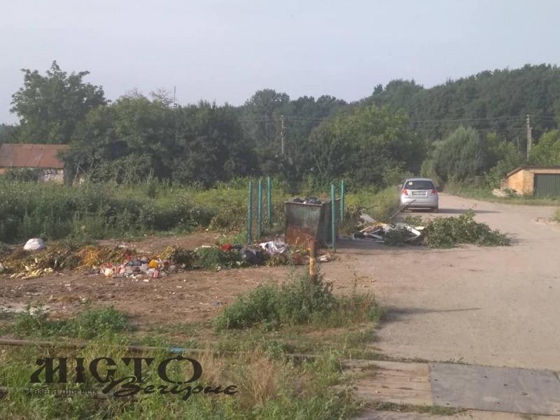 Комунальники скаржаться на мешканців Володимира, які створюють на вулицях міста стихійні сміттєзвалища