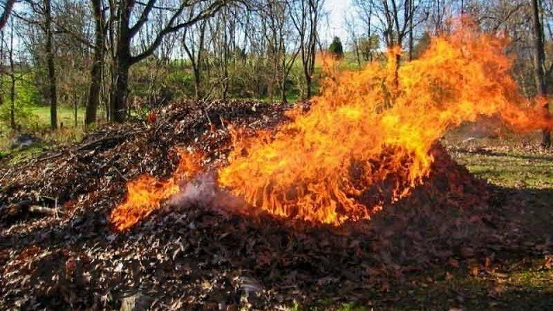 Волинянам за спалювання листя загрожує шість тисяч штрафу