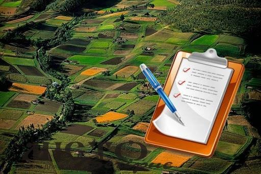 З початку року на Волині зареєстрували майже 5 тисяч земельних ділянок