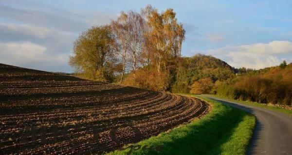 Верховна Рада ухвалила ключовий закон земельної реформи