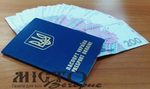 В Україні планують ввести економічний паспорт
