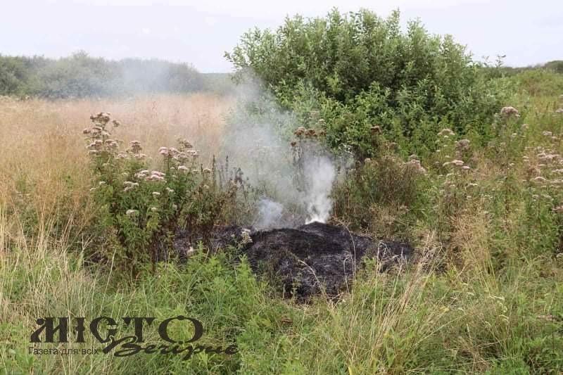 У Володимир-Волинському районі рятувальники разом з екологами та нацполіцією провели рейд