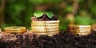 У Володимирві власникам землі та землекористувачам громади нагадують про сплату земельного податку