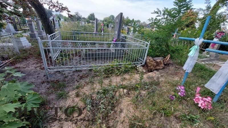 На Лодомирському кладовищі у Володимирі прибрали дерево, яке нещодавно пошкодило могили