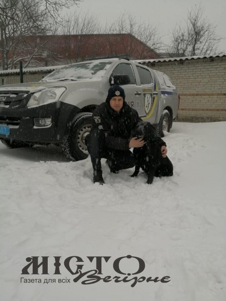 У Володимир-Волинському районі собака допоміг викрити зловмисника
