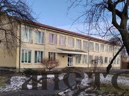Проєкт команди гімназії ім. О. Цинкаловського отримав грант від Міжнародної організації з міграції ООН