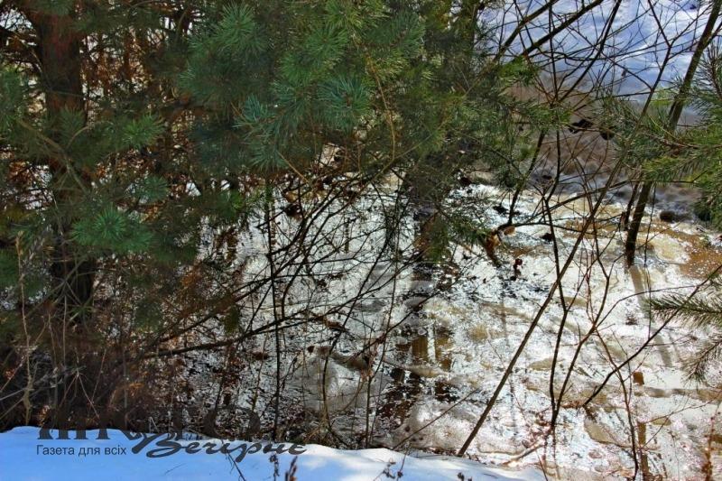 Триває слідство за фактом можливого забруднення земель нечистотами з володимирської птахофабрики