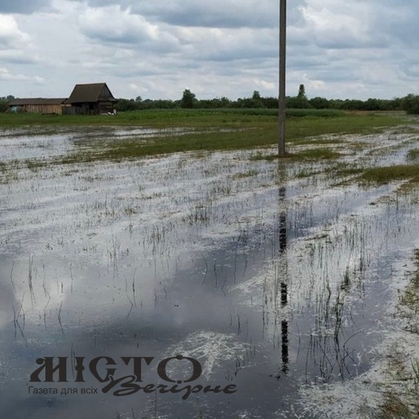 На Любешівщині затопило тисячі гектарів угідь