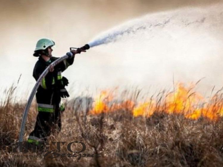 Рятувальники з лідером гурту «ФлайzZza» записали відео проти спалення сухої трави