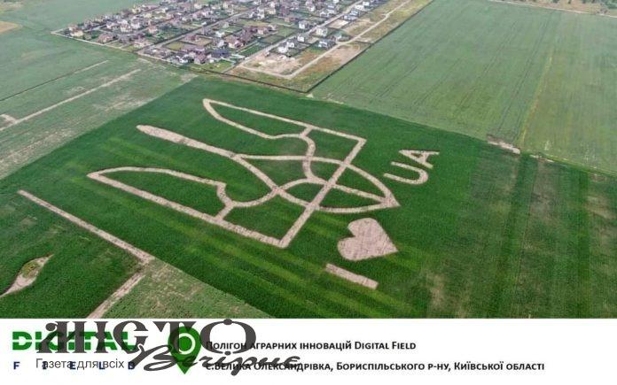 В Україні на поле висіяли найбільший в країні Державний герб