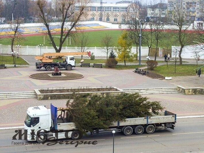 У Нововолинську святкова ялинка постоїть без прикрас