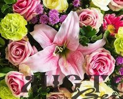 У Селецькій школі вчили висаджувати троянди та лілії