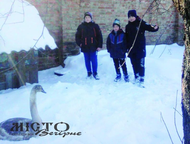 Максим і Захар Павлосі разом із другом Вадимом зараз доглядають  за врятованим птахом.