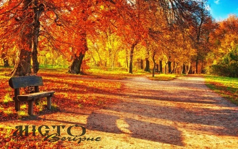 У жовтні готуємося до зими та закладаємо основи майбутнього врожаю