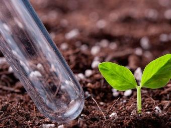 Володимир-Волинський виконком погодив правила застосування органічних добрив на території громади