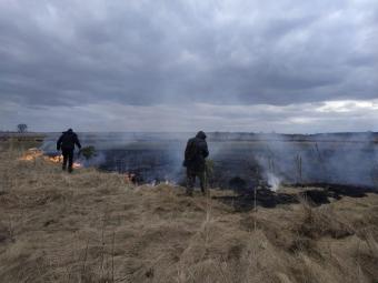 На Любомльщині «на гарячому» спіймали палія сухої трави