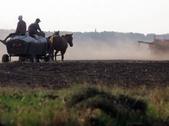 Селяни, які обробляють більше двох гектарів землі повинні декларувати доходи