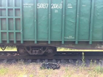 У Володимирі в потязі виявили контрабандні цигарки