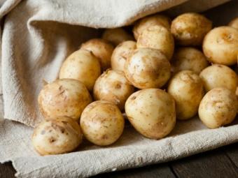 На Волині вивчають питання щодо будівництва заводу із переробки картоплі