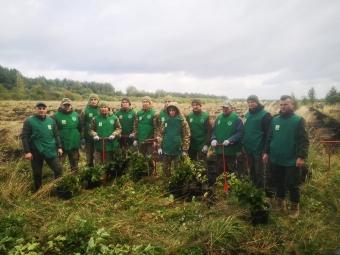 Прикордонники долучилися до Всеукраїнської акції «Створюємо ліси разом»