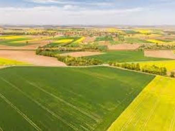 Пояснили, як сплатити земельний податок у разі відчуження протягом року земельної ділянки, яка перебувала у власності