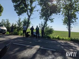 За Володимиром автомобіль злетів у кювет