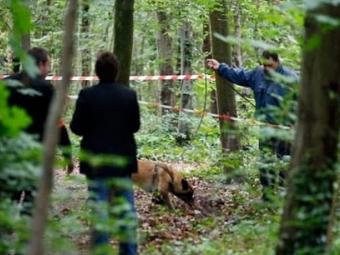 У Польщі в лісі знайшли мертвим українського заробітчанина