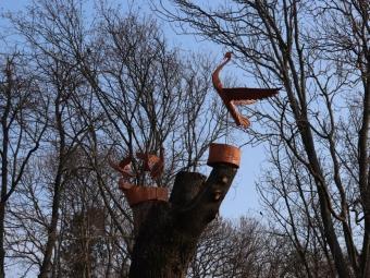 У Володимирі зрізані дерева оздоблюють скульптурами