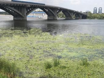 За останні 25 років в Україні зникло близько сотні річок