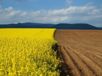 У росіян і терористів забиратимуть незаконно куплену українську землю