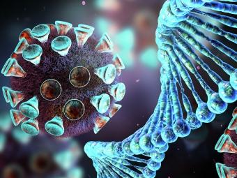 У Володимир-Волинській громаді виявили 32 нових випадки коронавірусу