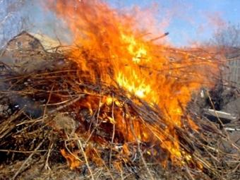 Дев'ять жителів Володимира-Волинського оштрафували за екопорушення