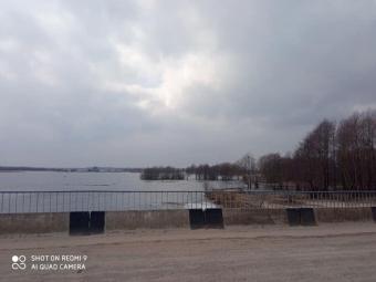 Річка Прип'ять вийшла з берегів