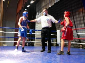 Чемпіонат з Волині з боксу відбувається у Володимирі