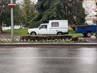 На вулицях Володимира почали висаджувати квіти