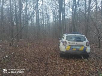 У Володимир-Волинському районі спіймали чоловіка, який займався незаконною вирубкою лісу