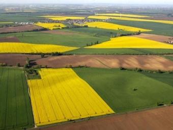 Уряд затвердив постанову про передачу земель громадам