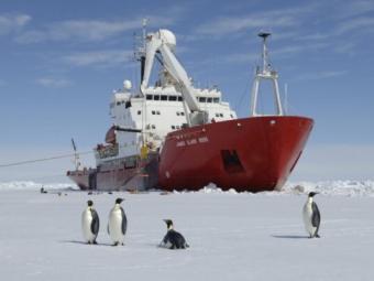 Україна придбає криголам для антарктичних експедицій